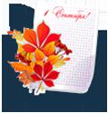 Цветы на 1 сентября - Kvit-land