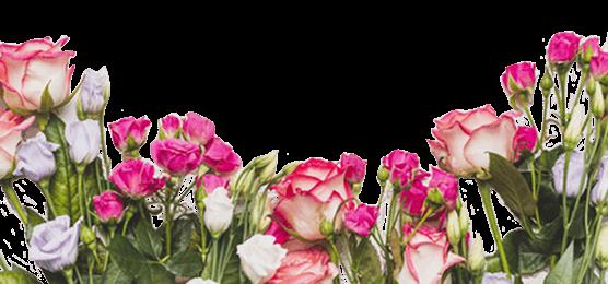 🌹 Розы - Kvit-land