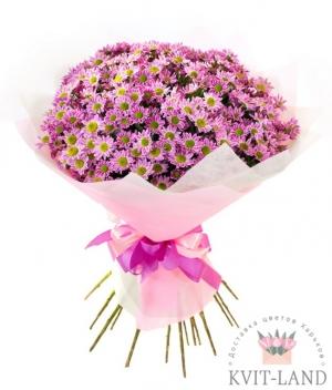 букет розовой хризантемы