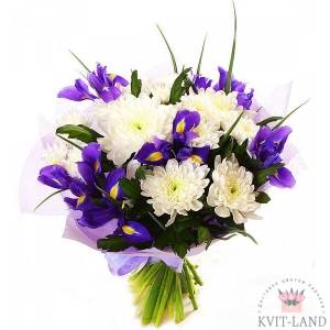 букет из ириса и хризантемы