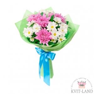 букет из белой и розовой хризантемы