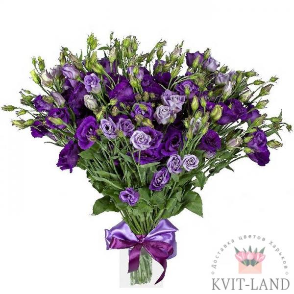 фиолетовая эустома букет