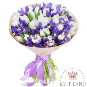белый тюльпан и ирис в упаковке