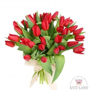 тюльпан красный букет