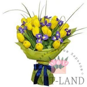 желтый тюльпан и ирис букет