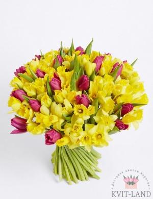 из тюльпанов и нарцисса букет