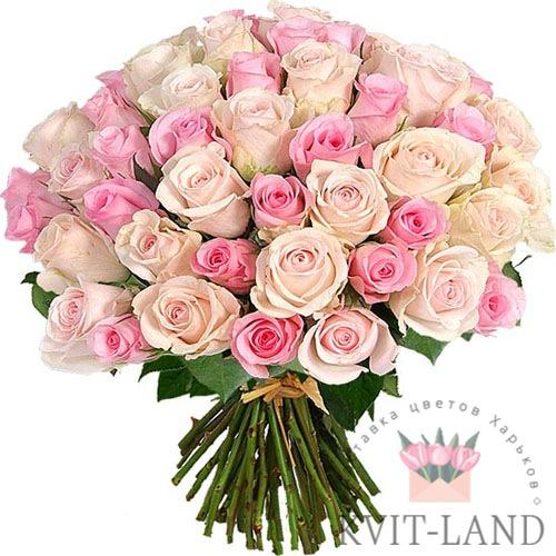 нежно-розовая роза 51 шт