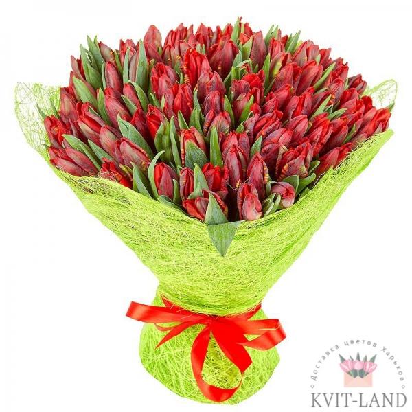 101 тюльпан в упаковке