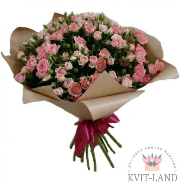 розовая роза в упаковке