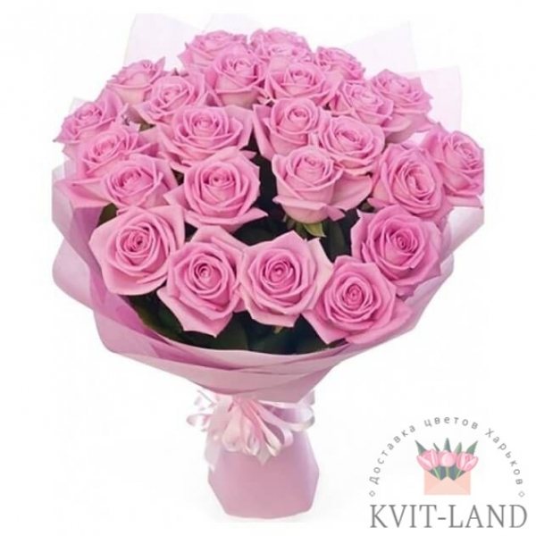 розовая роза 25 шт