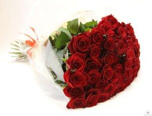 красная роза 35 штук