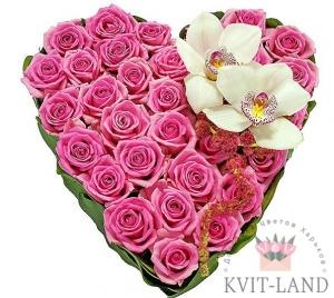 розовая роза в каркасе сердце