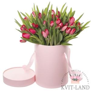 тюльпан в шляпной коробке