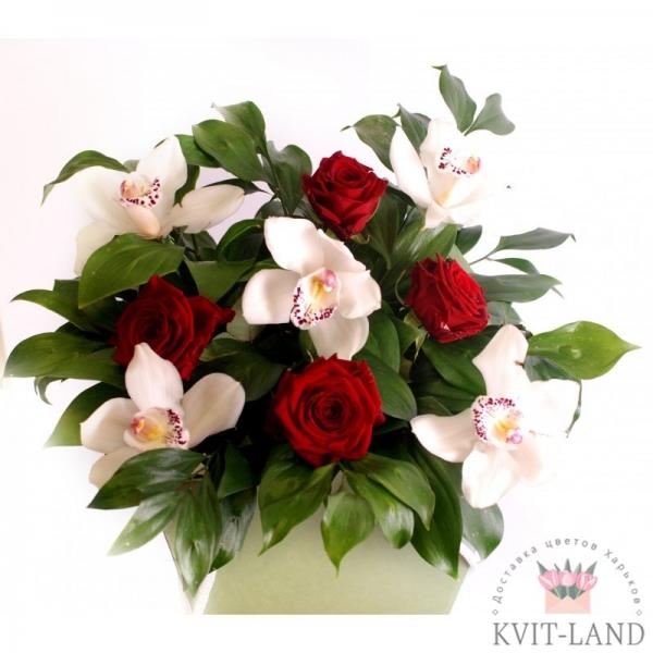 орхидея с розой в квадратной коробке