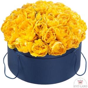 тюльпан в большой круглой коробке