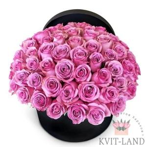 розовая роза в шляпной коробке