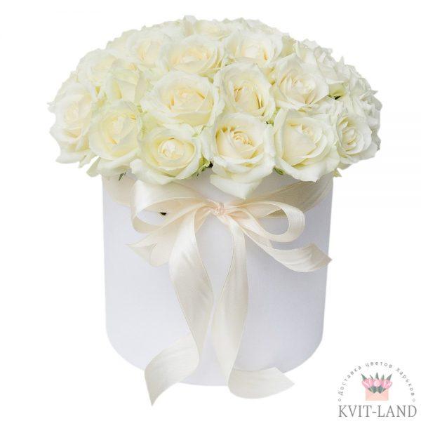 круглая коробка с белой розой