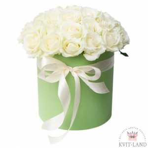 белая роза шляпной коробке