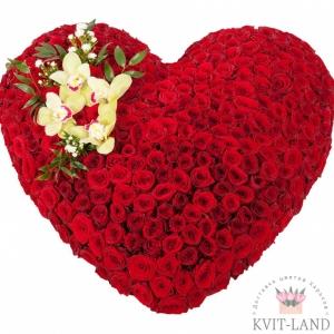 красная роза в каркасе сердце