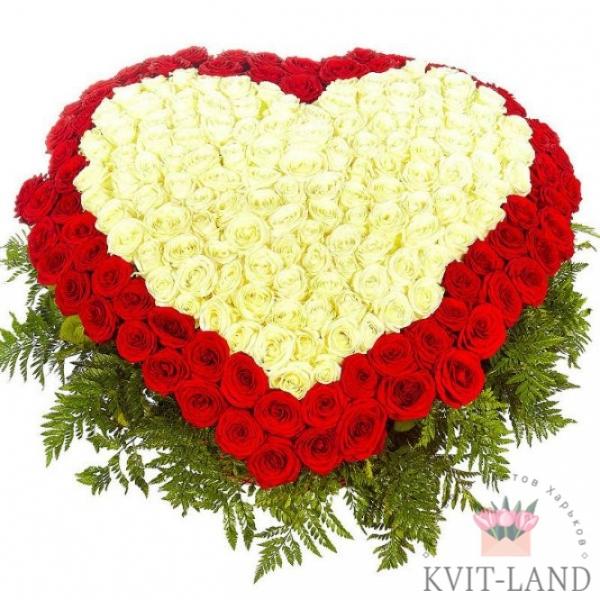 из роз большое сердце