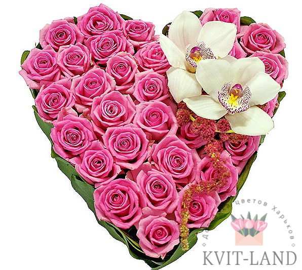 сердце из розы с орхидеей