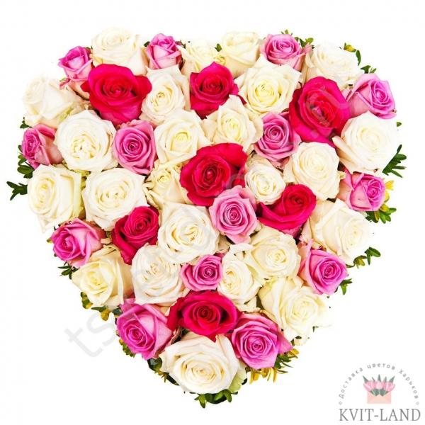 красивое сердце из роз