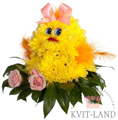 из желтой хризантемы цыплёнок