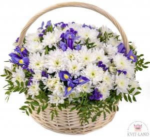 корзина с ирисом и хризантемой