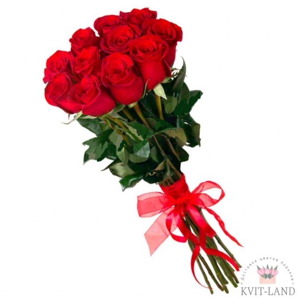 голландская роза 11 шт