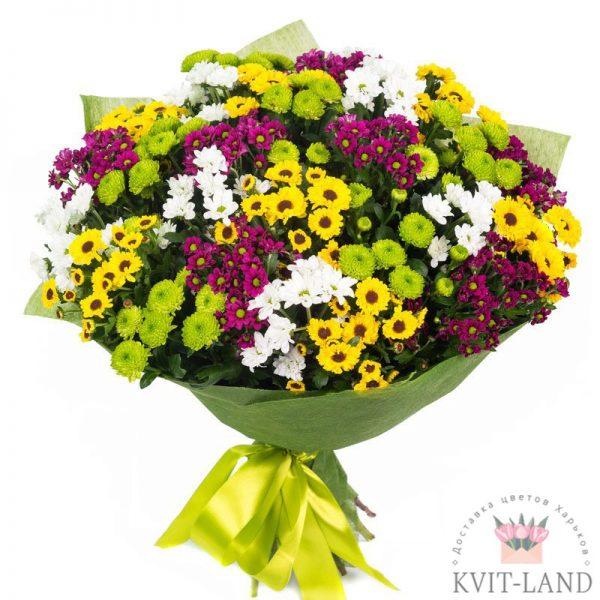разноцветная хризантема в букете