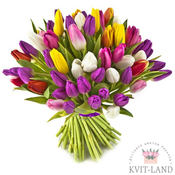 букет из разного тюльпана