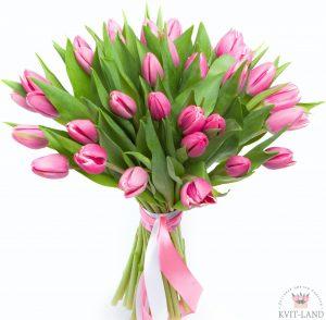 розовый тюльпан букет