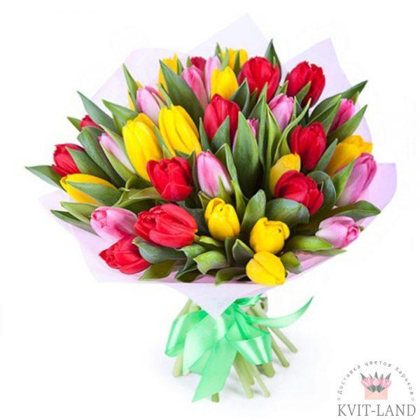 разноцветный тюльпан в букете
