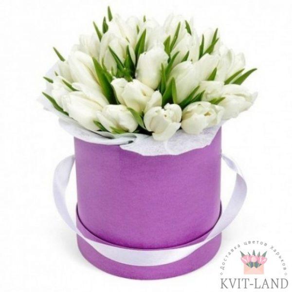 шляпная коробка с тюльпаной