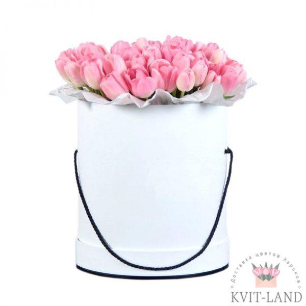 в шляпной коробке тюльпан