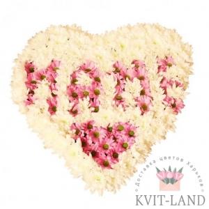 хризантема в каркасе сердце