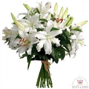 белые лилии букет