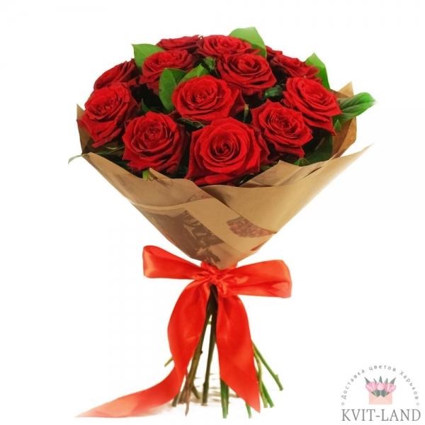 красная роза 13 шт