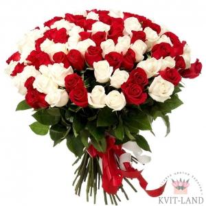 балая красная роза 51 шт