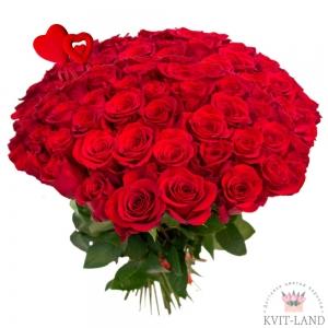 голландская роза 51 шт.