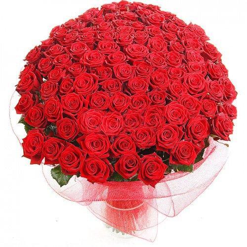 красная роза 101 в букете
