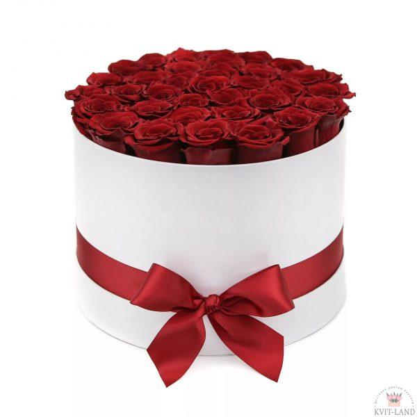 голландская роза в шляпной коробке