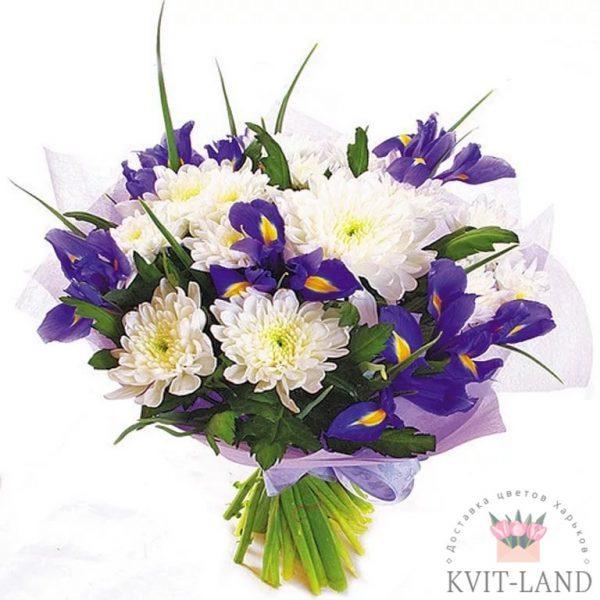 хризантема белая ирис букет