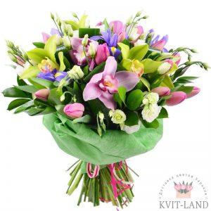 красивый букет цветы орхидеи