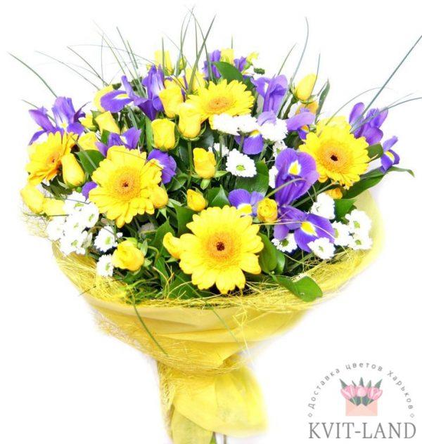 красивый букет желтых цветов