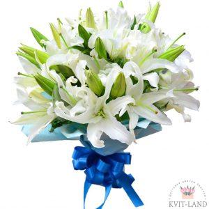 белая лилия букет