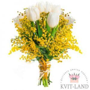 мимоза и белый тюльпан в букете
