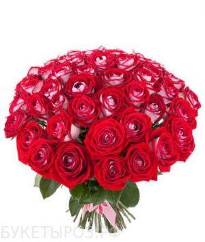 пятьдесят одна роза люксор