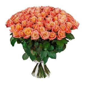 кораловая роза сто одна