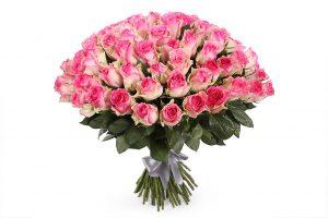 роза малибу сто одна